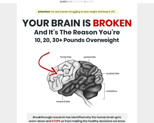 The Algorithm Diet - Weight Loss Program by Kevin McMillian
