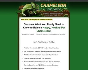 Chameleon Care Guide - Keeping and Breeding Healthy Chameleons Made Easy!