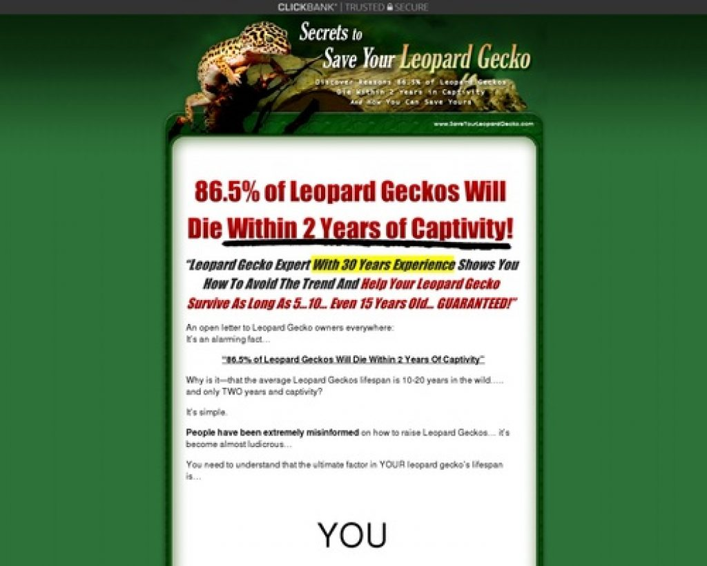 Save Your Leopard Gecko - Leopard Gecko Care
