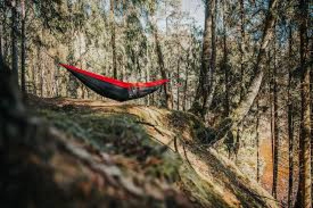 best camping hammock 2020