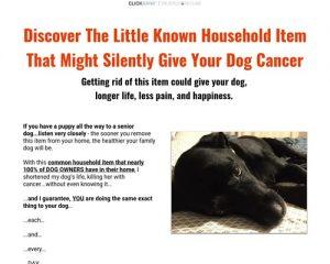 Save Your Dog
