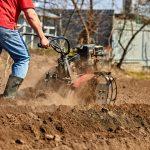 best garden tillers 2020